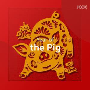 生肖猪可爱讨喜 印尼多城市自在迎猪年