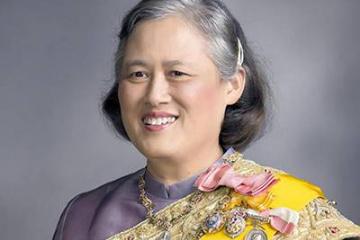 中国授予42人国家勋章和国家荣誉称号 包括泰国诗琳通公主